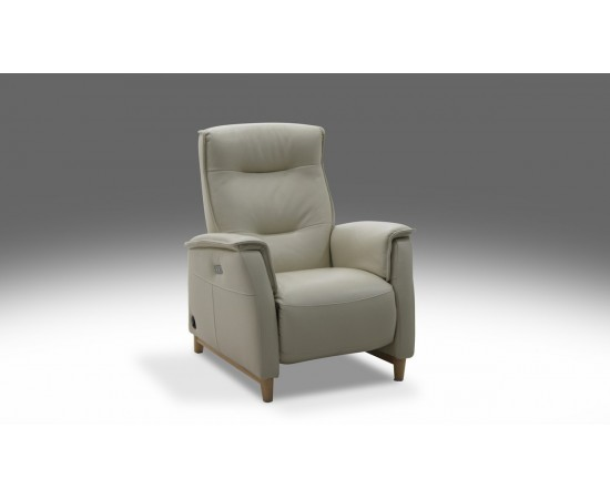 Domicil Electric Recliner Chair